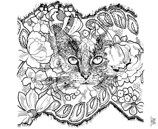 Lacy Catastic Illustration