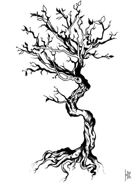 Bonsai Tree Illustration