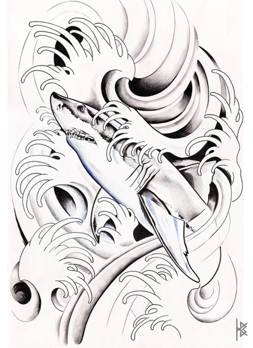 Sharky Illustration