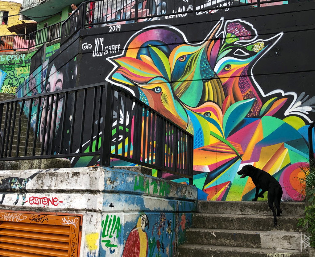 COMUNA13 (Middle of District)